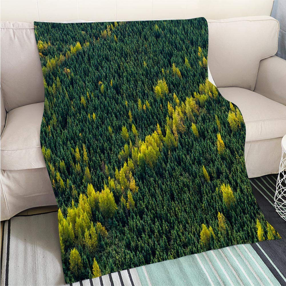 color6 39 x 59in BEICICI Art Design Photos Cool Quilt The Building of The Forbidden City in Beijing Fun Design All-Season Blanket Bed or Couch