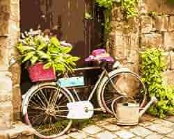 Pintura por números para adultos, bicicleta vieja con flores en cesta, enmarcado, 40 x 50 cm: Amazon.es: Juguetes y juegos