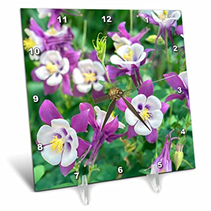 6 x 6 3D Rose Bloom Where You are Planted Desk Clock