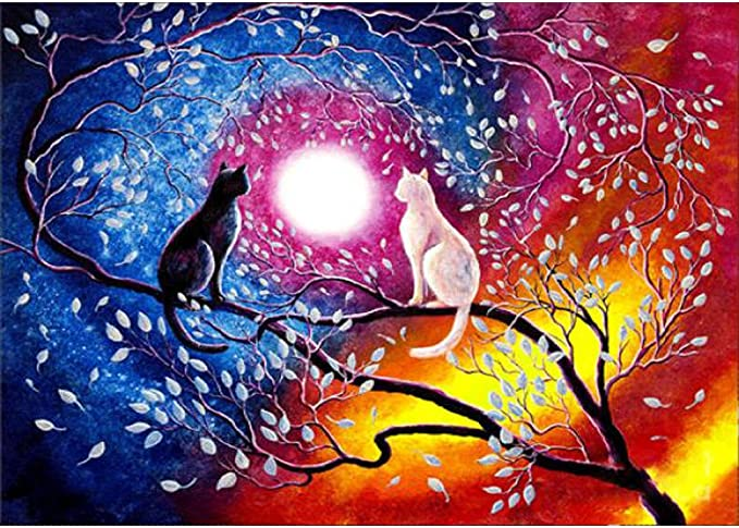 SUMAJU DIY 5D Diamond Painting Kit,Cat Diamond Painting Kits Full Drill Cute Cat Embroidery Cross Stitch Arts Craft 30x30cm