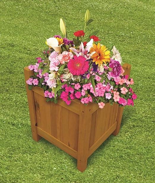 Piante E Fiori Da Giardino.Elitezotec C New Vasi Da Giardino In Legno Per Esterni Piante Vaso