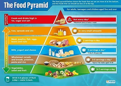 Amazon.com: Alimentos Pirámide |science educativo Gráfico ...