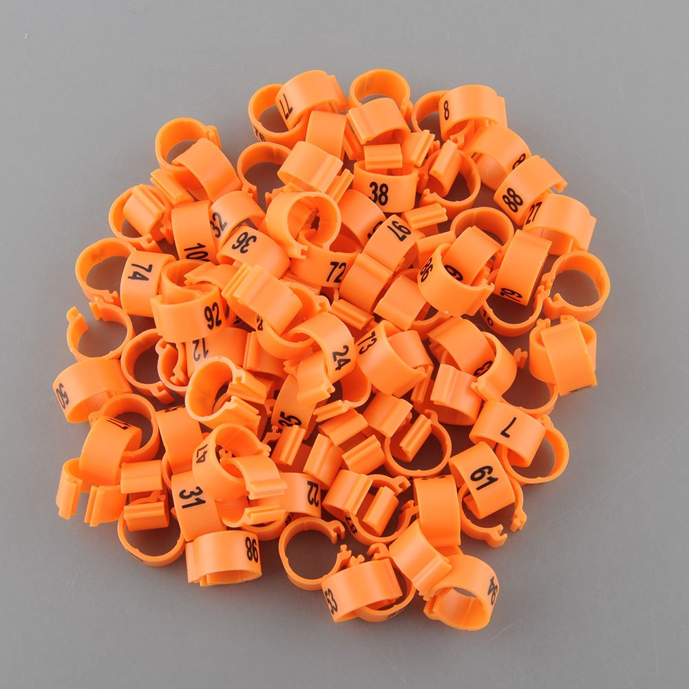 games toys bands orange com refill pack amazon band rubber loom free latex dp