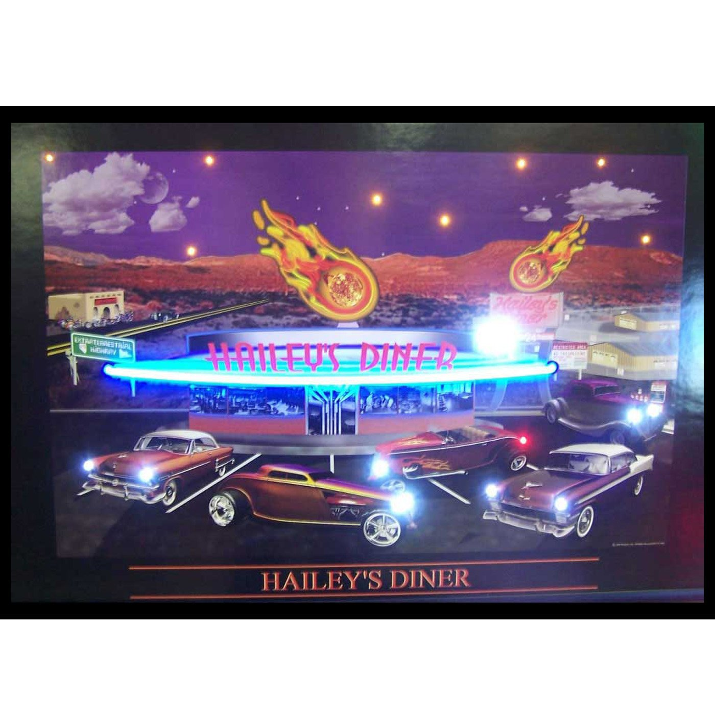 Haileys Diner Neon/LED Picture by Neonetics