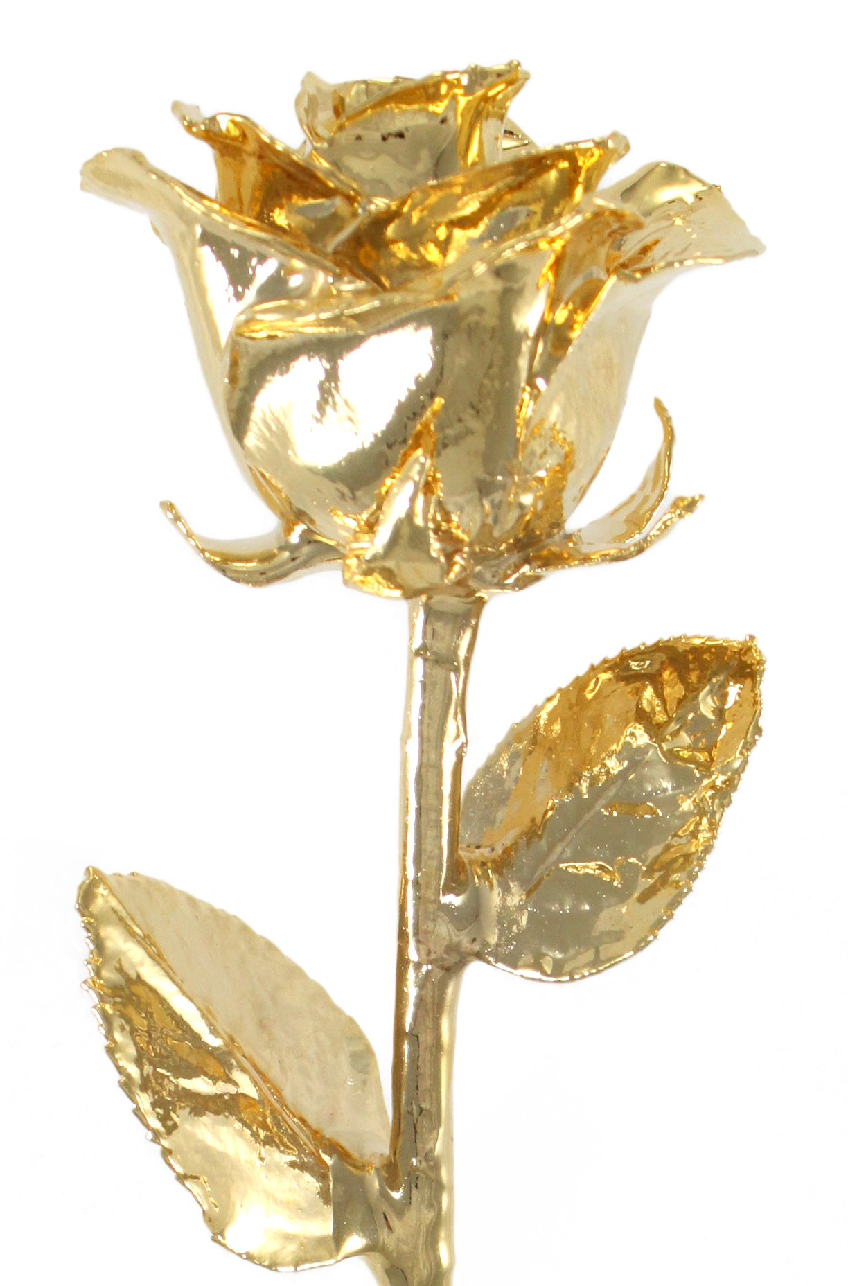 Real Rose Dipped in 24k Gold - Venus Rose (12'' Open Bud) by Living Gold by Living Gold