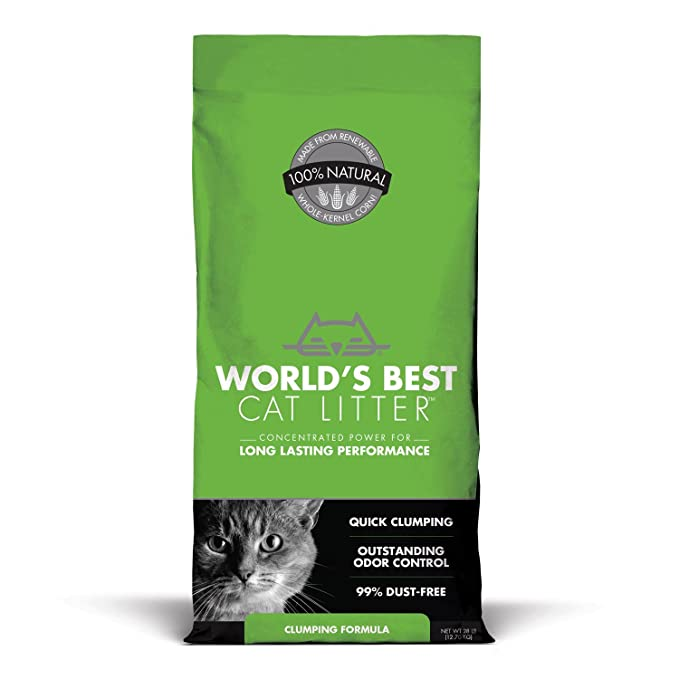 Mundial de Mejor Cat camada