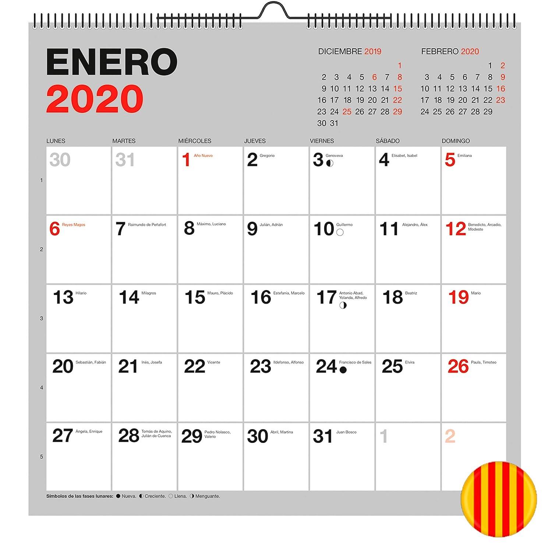 Calendario de Pared 155 x 430 mm para escribir Gris 2020 B/ásico Castellano Miquelrius 28035