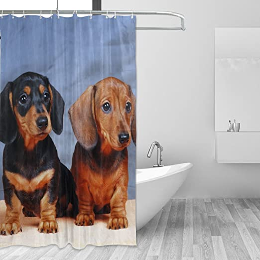 Coosun Dachshunds Dog Shower Curtain Set Polyester Fabric Water Repellant Bathroom Shower Curtain Set Home Decoration With Hooks 60w X 72l Inche Amazon Co Uk Kitchen Home