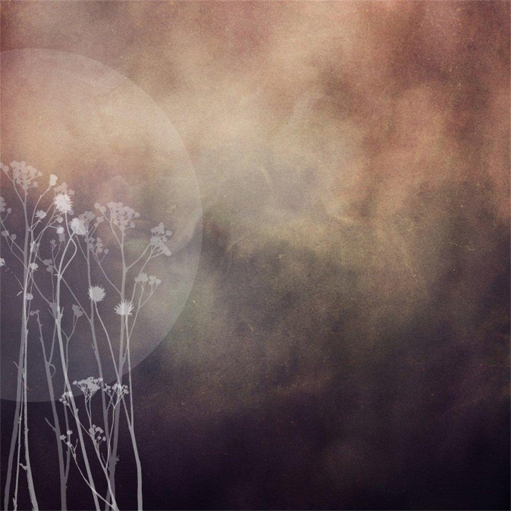LFEEY 6x6フィート 抽象的 クールムーン 写真撮影用背景 子供 女の子 大人 赤ちゃん ポートレート ビニール背景 写真撮影用 ブース小道具   B07D7PVNCZ