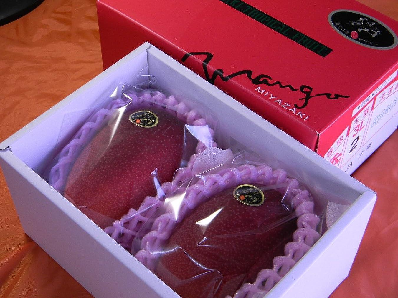 損傷育成エレメンタル沖縄県産フルーツ 濃厚完熟アップルマンゴー訳あり家庭用2kg