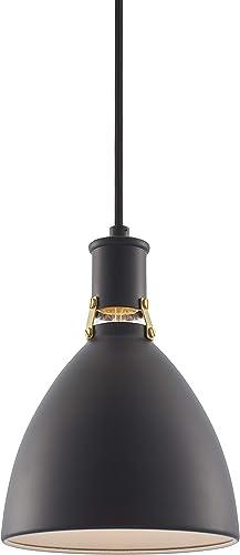 OVO Pendant Light White Pendant Lighting for Kitchen Island with LED Bulb LL-P741-5BLK
