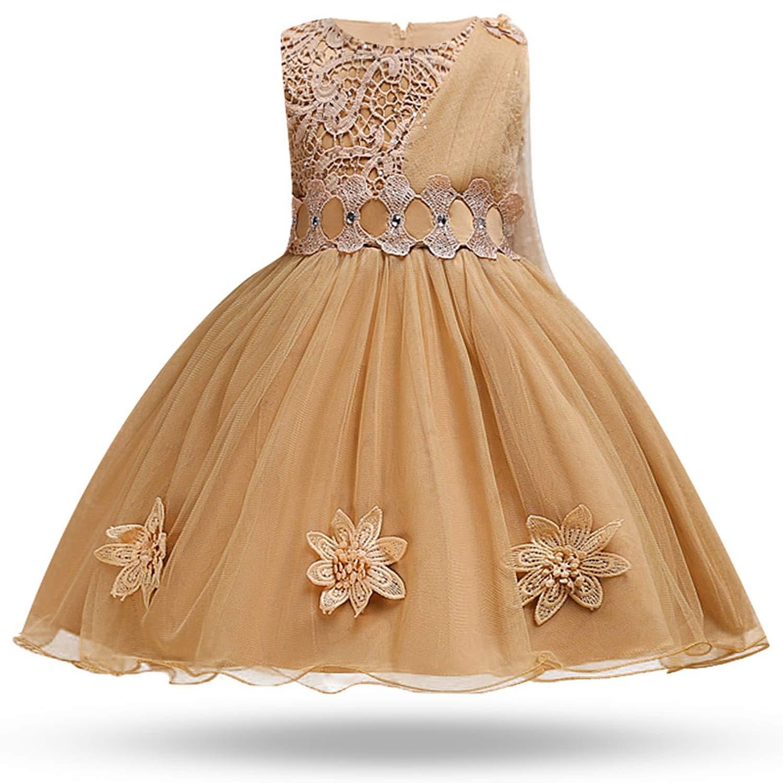 Children's Summer Unique Lace Wedding Dress Sequin Applique Mesh Girl Baby Party Dress Children's Day Piano Performance Dress, 3T