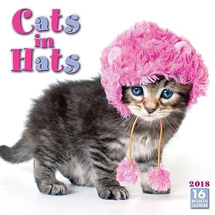 Cats In Hats 2018 Wall Calendar CA0116