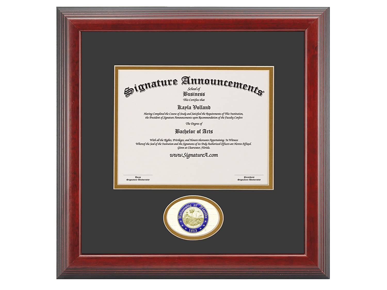 Signature Announcements University of Florida UF Undergraduate and Graduate Graduation Diploma Frame with Sculpted Foil Seal Cherry, 20 x 20