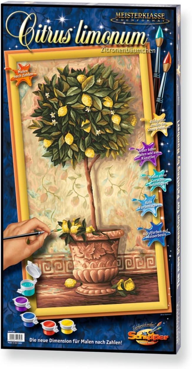 18 x 24 cm Soggetto: Verdure Dipingere coi Numeri Schipper 609340719