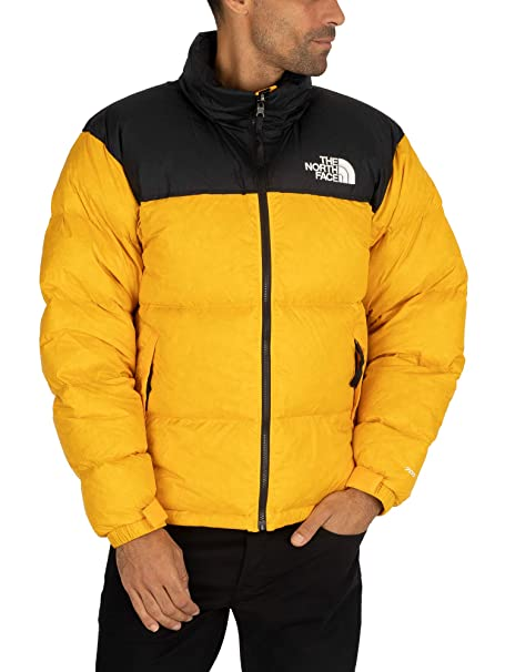 Giubbotto The North Face