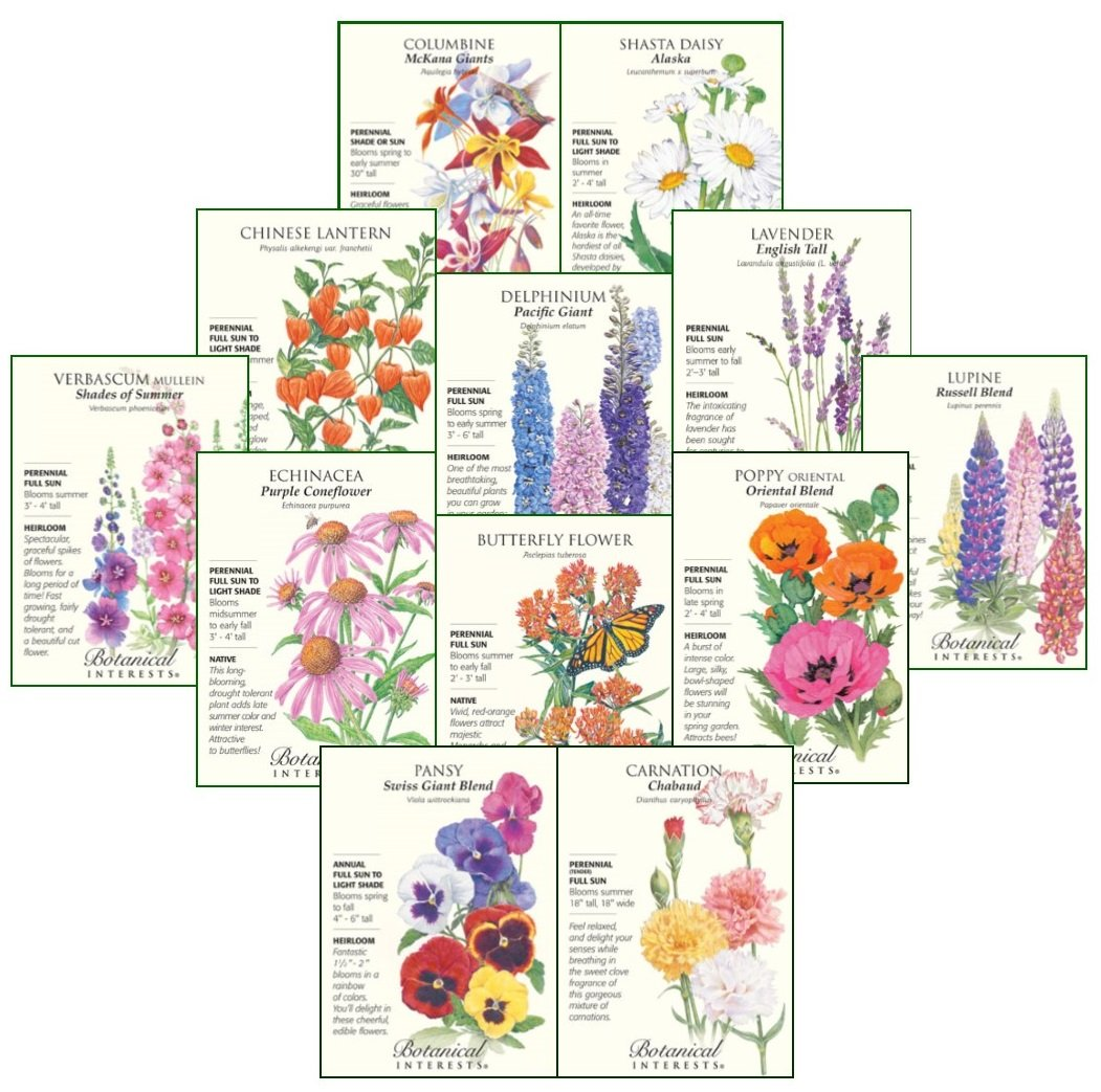 Botanical Interests''Play it Again'' Perennial Flower Seed Collection - 12 Packets with Gift Box by Botanical Interests