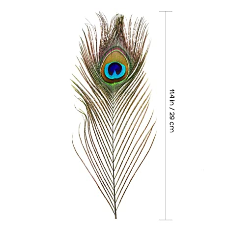 ETSAMOR Real Peacock Feathers for DIY Art /& Craft Wedding Festival Home Decoration 2m Strips of Fabric Peacock Tail Feathers with Eye 15-20cm