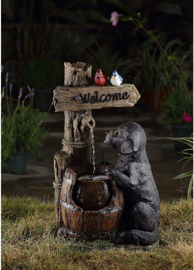 Velda Agua parte Fuente jardín Brunnen perro con led gris poliresina 851081: Amazon.es: Jardín