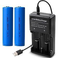 2 pzzi batteria Ricaricabile 18650 e Caricabatterie batterie universale, batterie 18650 3000mah 3.7V, Caricabatterie USB 2-Slot e LED (2pcs 18650)