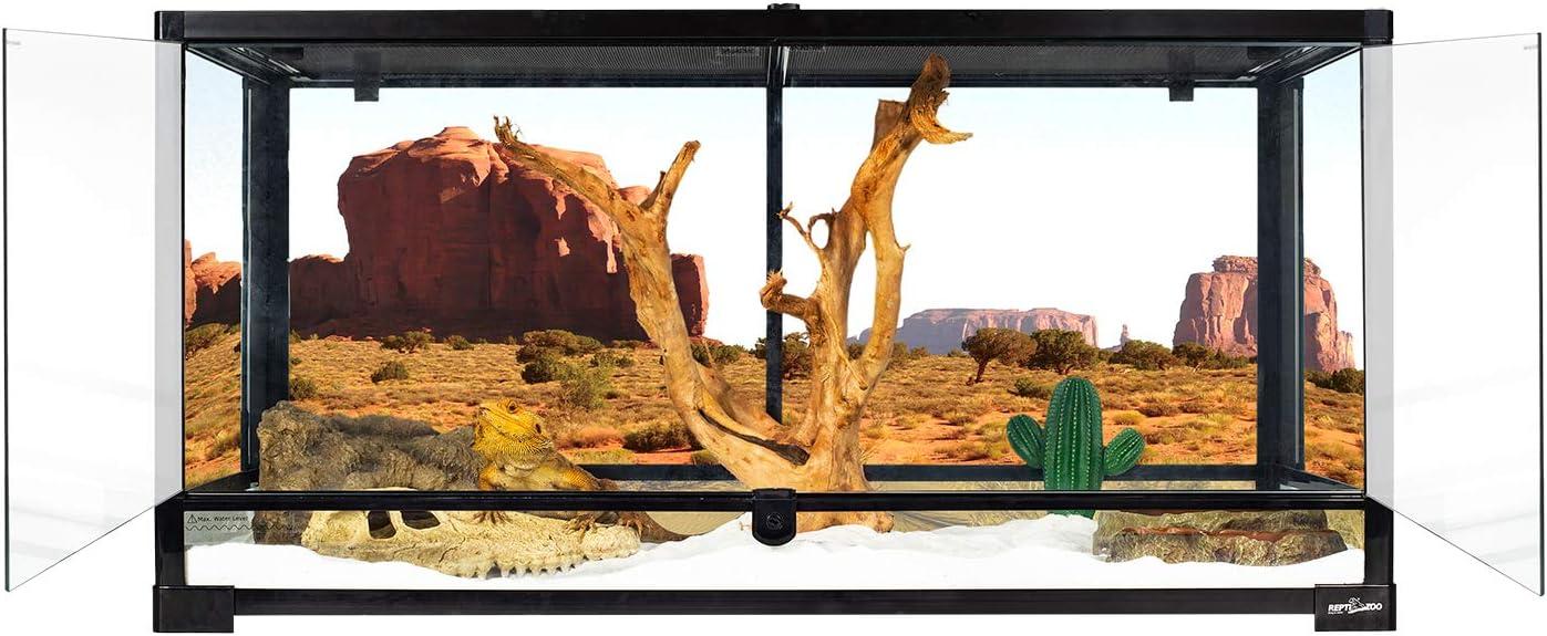 REPTI ZOO Reptile Glass Terrarium Tank Double Hinge Door with Screen Ventilation Large Reptile Terrarium 36