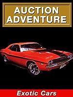Auction Adventure: Exotic Cars