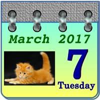 Calendar My Kittens