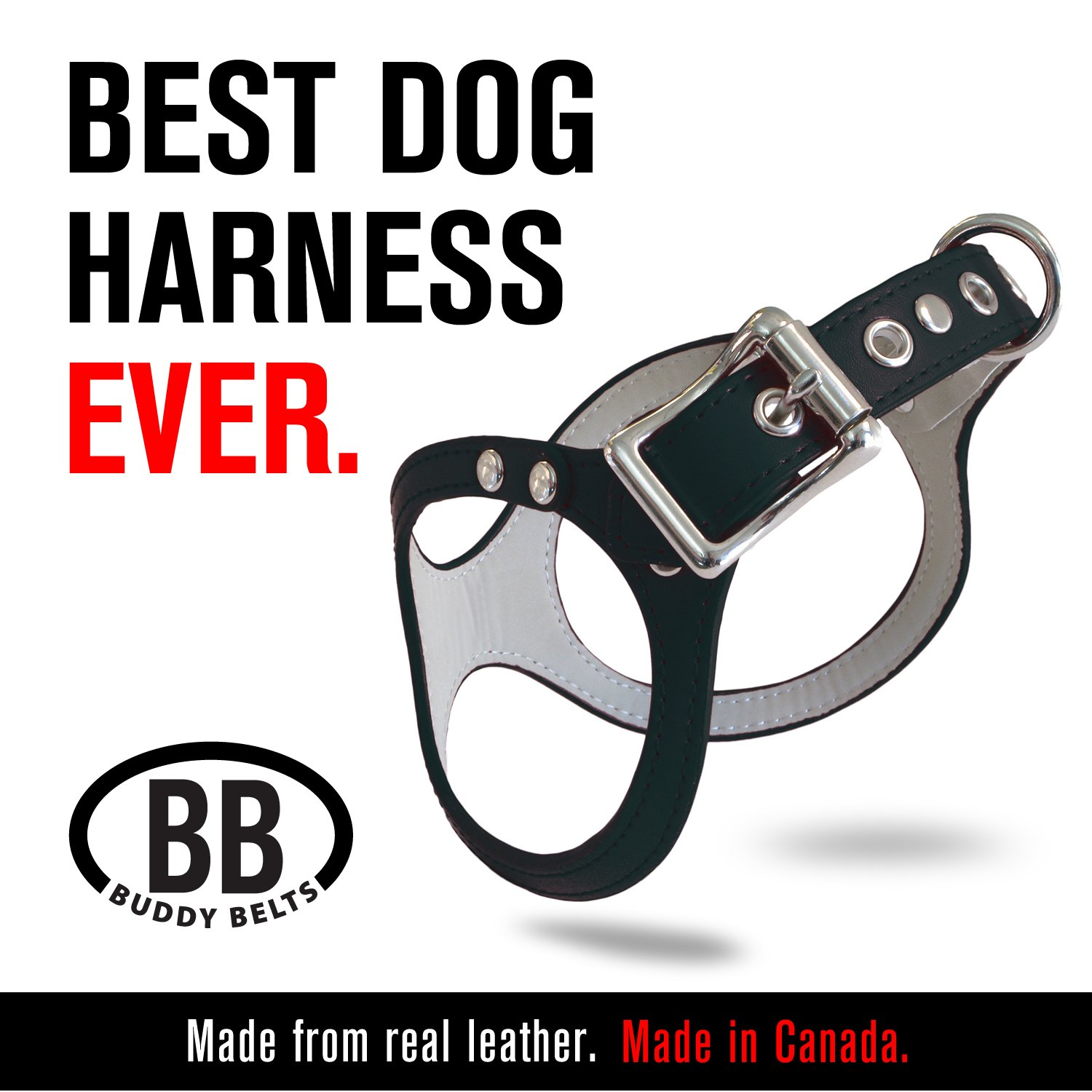 Black 3.5 Black 3.5 buddy-belts ORIGINAL DURABLE Classic LEATHER Dog Harness