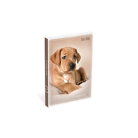 Lannoo My Favorite Friends perro - agenda escolar 2015 ...