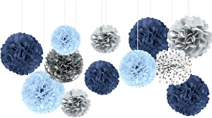 NICROLANDEE Wedding Party Decorations - 12PCS Dusty Blue Tissue Paper Pom Poms for Romantic Wedding, Birthday, Baby Shower, Bridal Shower, Engagement Party, Home Decor