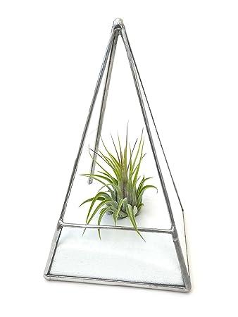 Pyramid Terrarium 1 Air Plant White Sand Guide Diy Kit
