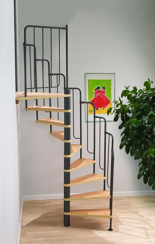 Escalera de caracol de Barcelona Loft Dolle - de metal negro-trabajo (en stock): Amazon.es: Bricolaje y herramientas