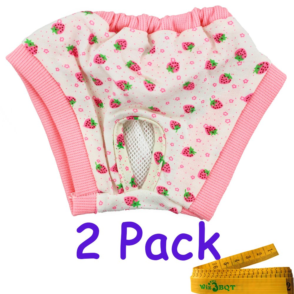 A Adorable Reusable Washable Elastic Strawberry Printed Dog Pet Diapers Cover up Sanitary Panties Small Medium Female Girl Dogs Puppy in Spring Summer Autumn,2 Pack (A)