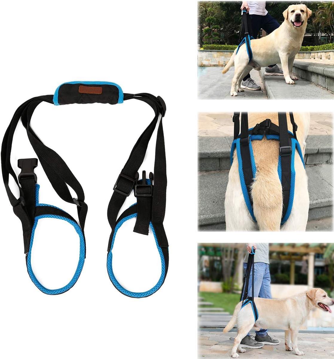 Tineer Dog Lift Arnés para piernas traseras Soporte para Mascotas Arnés Cabestrillo Trasero Ayuda Piernas débiles Levántate Soporte Arnés de Equilibrio para Artritis Rehabilitación Perros (S)