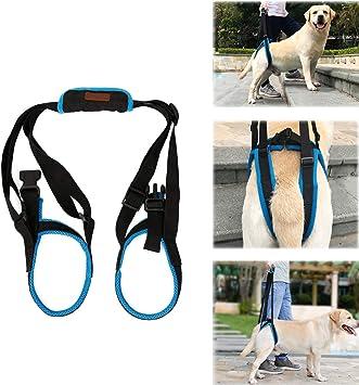 Tineer Dog Lift Arnés para piernas traseras Soporte para Mascotas ...