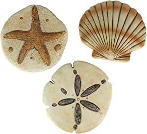 Chesapeake Bay Ltd Set of 3 Cement Sea Shell Stepping Stones Hanging Sand Dollar Starfish Scallop
