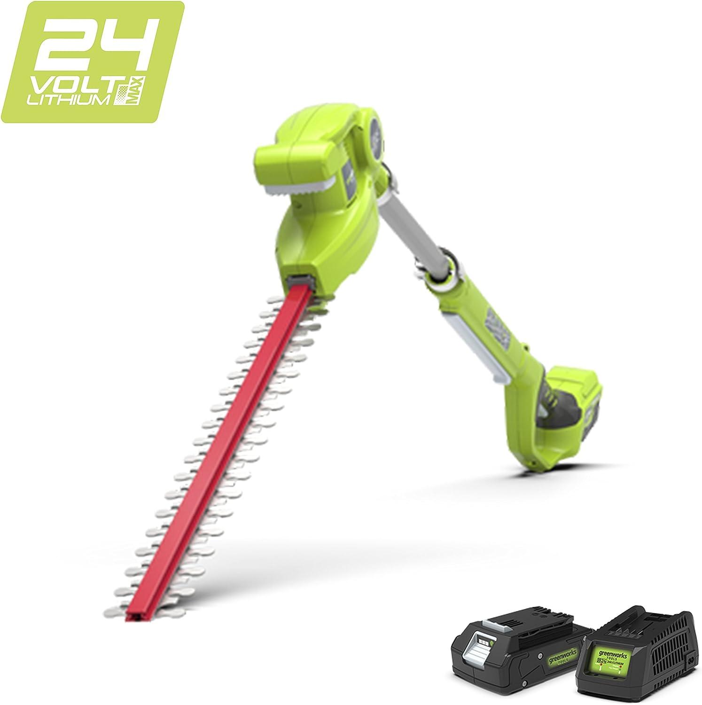 Greenworks Tools 2200207UA Cortasetos Telescópico Inalámbrico, 24 V, Verde