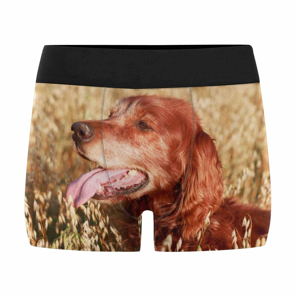 Interestprint Boxer Briefs Men S Underwear Red Irish Setter Dog Xs