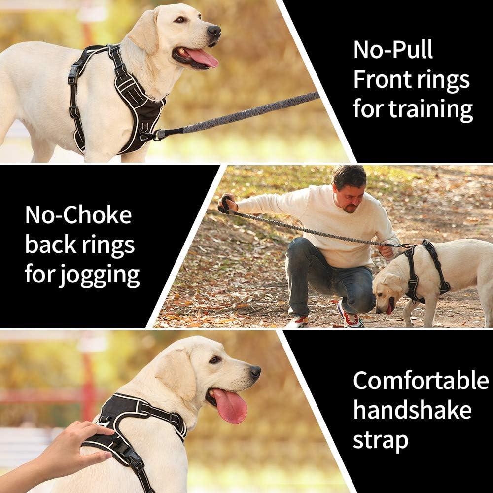 Heele Harnais pour chien anti-traction r/églable pour ext/érieur pour chiot moyenne et grande tailles 3 m 4 tailles chiens de petite 6 couleurs tissu Oxford r/éfl/échissant