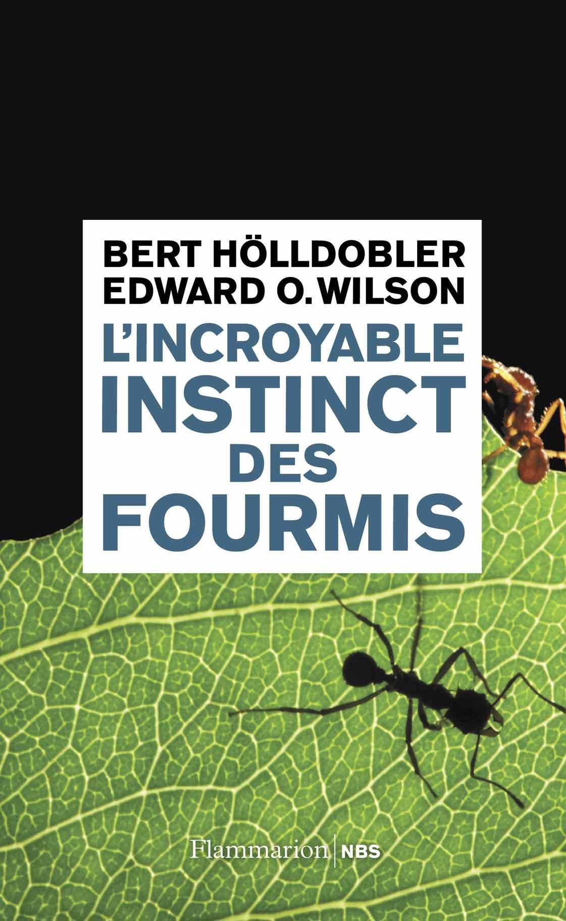 L'incroyable instinct des fourmis - Hölldobler & Wilson