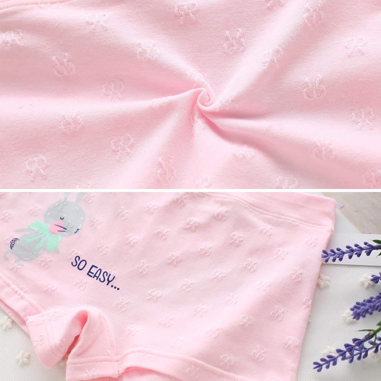 Evelin LEE 5 pcs Kids Girls Cute Knickers Boxer Briefs Underwear Boyshort Underpants 05BFA0387-CA-ZL