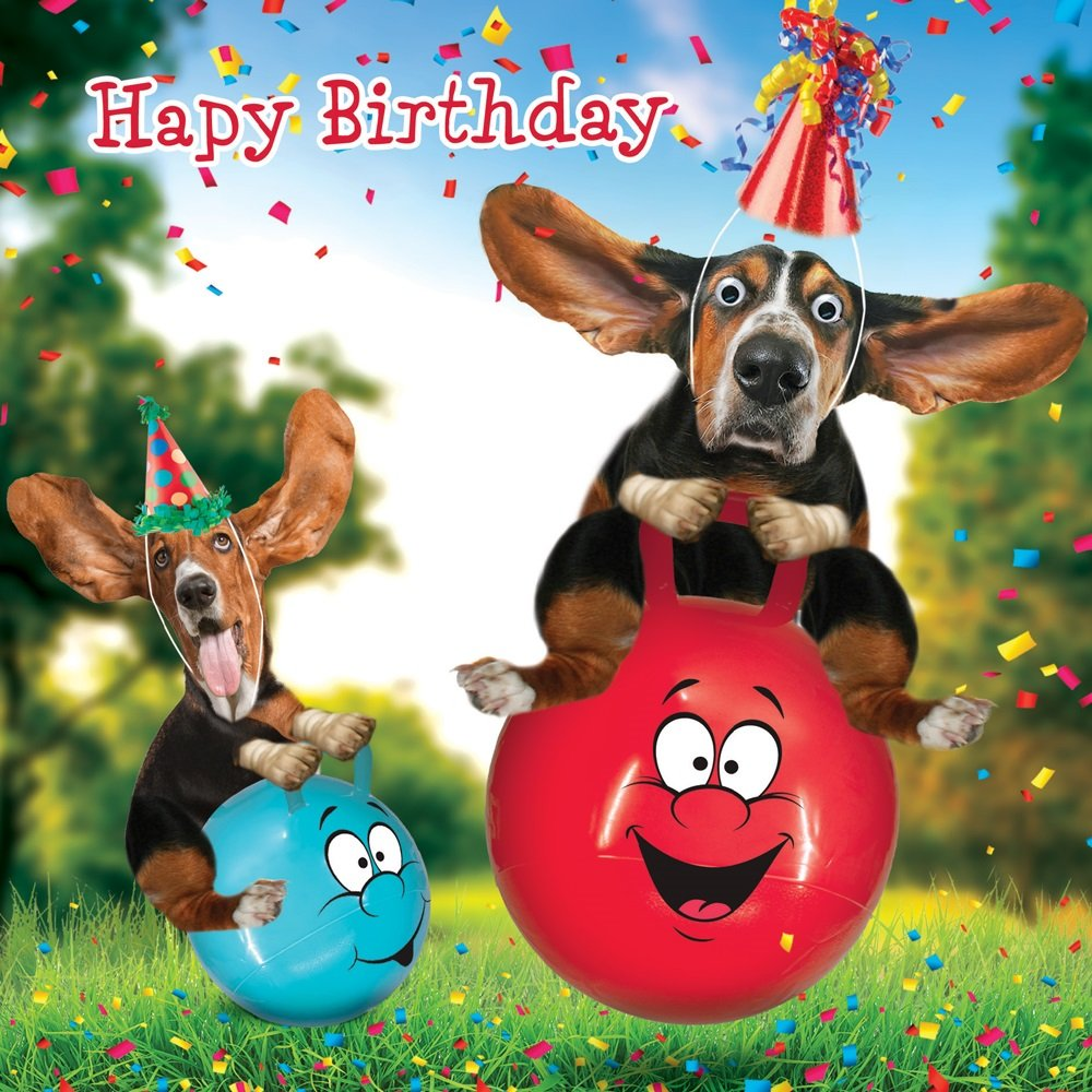 Funny Basset Hound Dog Space Hopper Birthday Card Bouncey