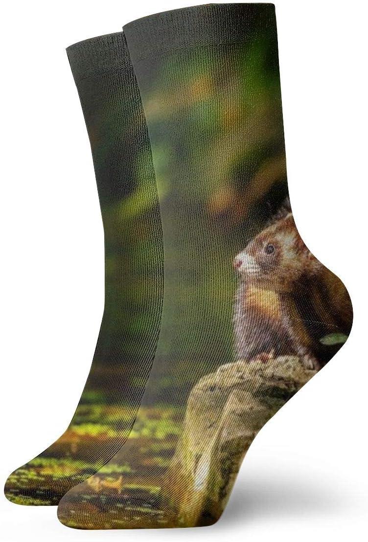BJAMAJ - Calcetines Unisex en Primavera, diseño de hurón Interesante Calcetines de poliéster para Adultos de algodón
