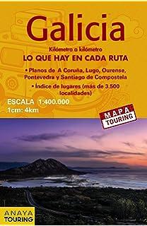 Mapa de Galicia: Escala 1:250.000 (Cartografía): Amazon.es ...