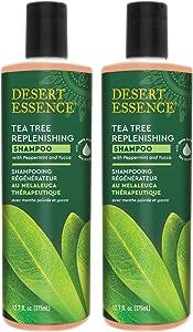 Desert Essence Tea Tree Replenishing Shampoo - 12.7 Fl Oz - Pack of 2 - Therapeutic - Peppermint & Yucca - Antibacterial - Restore & Nurture Hair - Reduce Flaking - All Skin Types