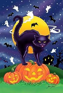 Toland Home Garden Black Cat 12.5 x 18 Inch Decorative Halloween Kitty Pumpkin Garden Flag