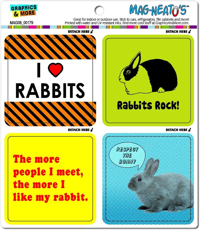 Bunny Rabbit Love Automotive Car Refrigerator Locker Vinyl Magnet Set