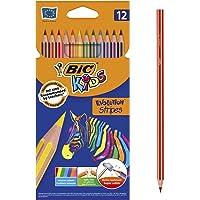 BIC Kids Evolution Stripes Kuru Boya Kalemi, 12'li Kutu