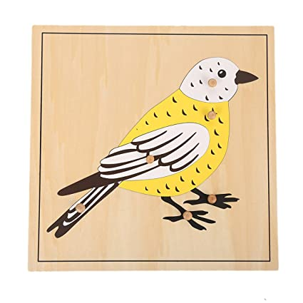 Amazon Com Leader Joy Montessori Nature Materials Bird Puzzle For