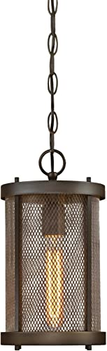 Westinghouse Lighting 6318200 Skyview One-Light Outdoor Pendant, Oil Rubbed Bronze Finish with Mesh and Clear Glass